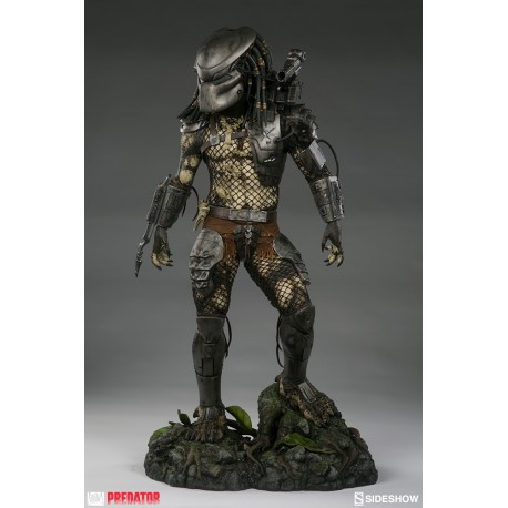 Jungle Hunter Predator