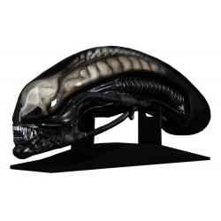Alien Réplica 1/1 Cabeza Giger's Alien