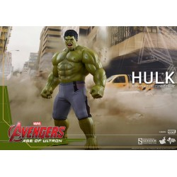 Hulk Sixth Scale Figure by Hot Toys